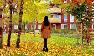 6 Reasons To Fall In Love With Fall